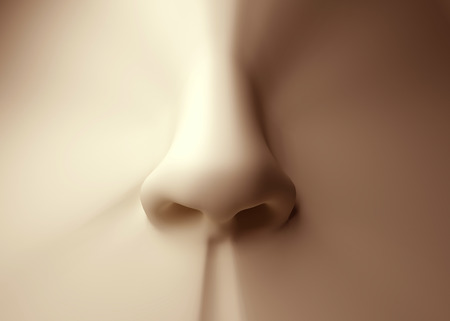 Humane: 3D model of human nose Stock Photo