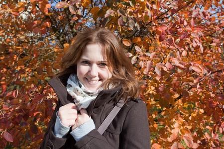 Autumn Stock Photo - 7527004