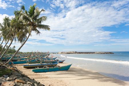 Sri Lanka, Asia, Dodanduwa - Palm trees at the coastline of Dodanduwa