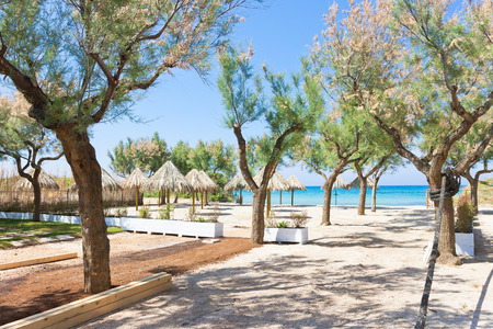 Spiaggia Terme, Apulia, Italy - Trees and sunshades at the beach Standard-Bild - 101382534