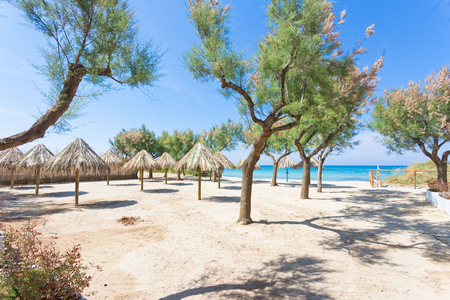 Spiaggia Terme, Apulia, Italy - Visiting the beautiful beach of Spiaggia Terme Standard-Bild - 101343408