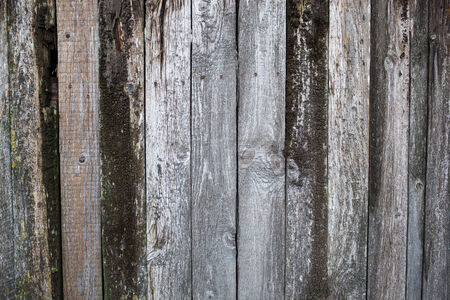 Wooden wall background or texture photo