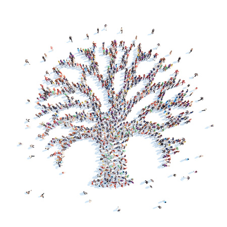 large: Large group of people in the form of a tree. Isolated, white background.