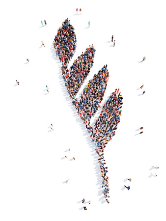 Large group of people in the form of a leaf. Isolated, white background. photo