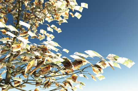 close up of a tree with 50 and 100 euro bills instead of the leaves on the left and the blue sky on background