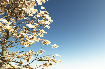 close up of a tree with 50 euro bills instead of the leaves on the left and the blue sky on background Stock Photo