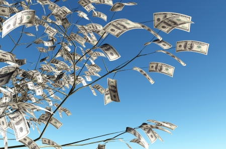 close up of a tree with 100 dollars banknote instead of the leaves on the left and the blue sky on background