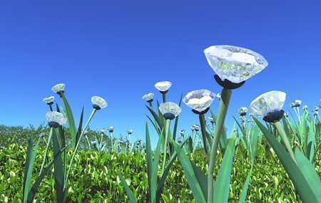 a view of a small hill covered of many plants with diamonds instead of flowers between the common grass green, and a blue sky on the background Stock Photo - 18983047