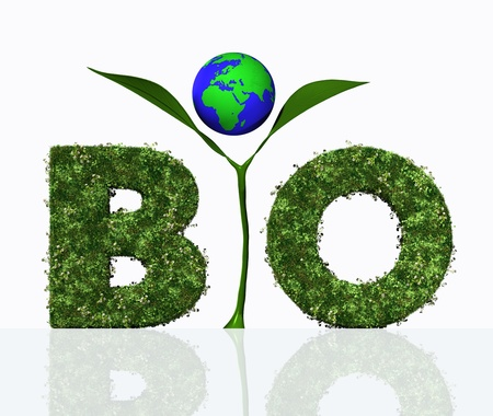 a view of the bio word composed from the letters B and O that are covered by grass and flowers, and the letter I that is a small green plant with two leaves and the world that is placed among them photo