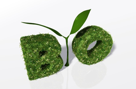 a view of the bio word composed from the letters B and O that are covered by grass and flowers, and the letter I that is a small green plant with two leaves Stock Photo