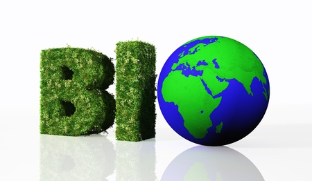 replaced: a view of the bio word composed from the letters B and I that are covered by grass and flowers, and the letter O that has been replaced by a blue and green world