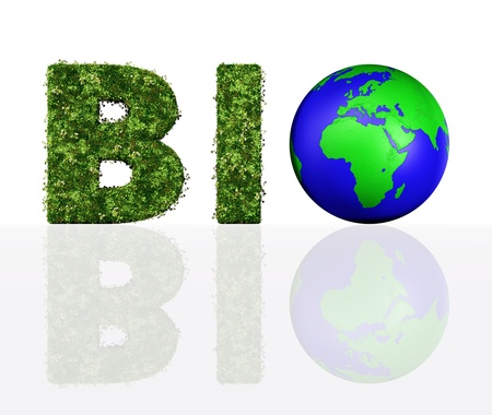 a front view of the bio word composed from the letters B and I that are covered by grass and flowers, and the letter O that has been replaced by a blue and green world photo