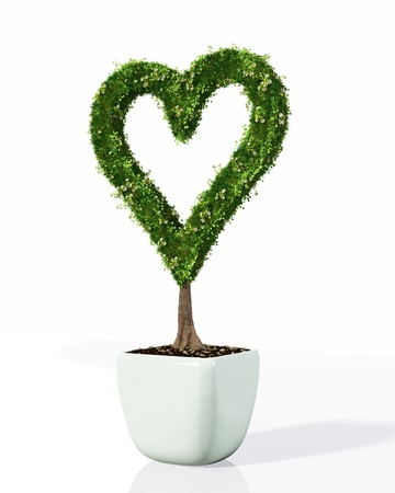 a small plant in the shape of heart planted in a white pot has its profile fully covered by grass and flowers, on a white background Stock Photo