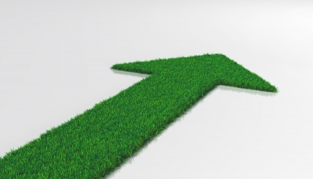 a carpet of grass on a white background ends with one arrow that indicates a forward direction
