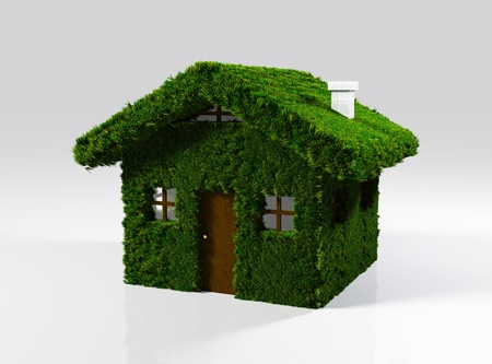 a closeup of a small house that has the whole walls and roof covered by lawn except the door, windows and chimney  On a white background Stock Photo