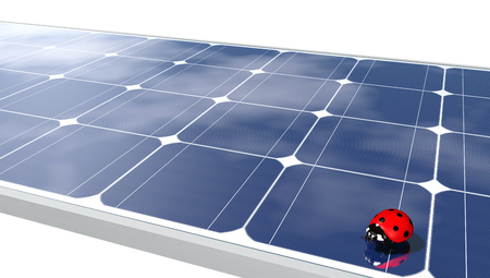 a red ladybug is on a solar panel where are reflected some clouds, on a white background