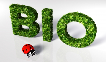 bio text covered by grass and flowers, and a small ladybug in front of it are on a white ground