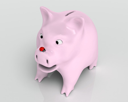closeup of a surprised piggy bank that watches a red ladybird which stands on top of its nose, on a neutral background