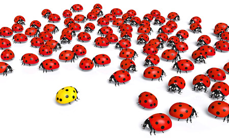 crowd of red ladybugs marginalize a yellow one taking distance from it, on a white background