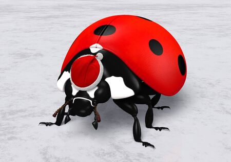 closeup of a ladybird that wears on its head a Santa Claus red hat on a white and grey abstract ground