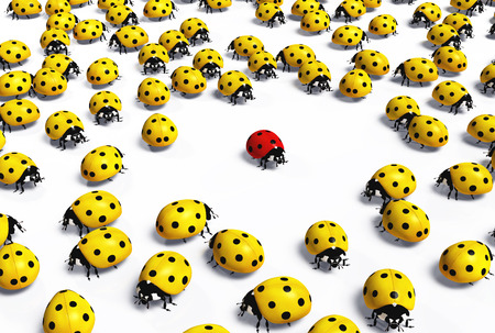crowd of yellow ladybugs marginalize a red one taking distance from it, on a white background Stock Photo