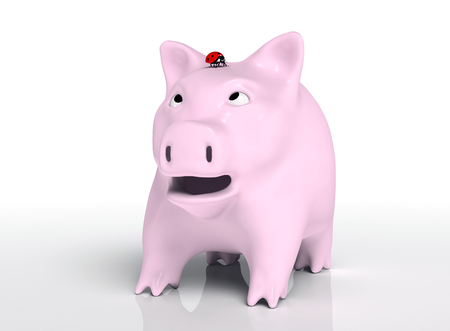 closeup of a surprised piggy bank that watches a red ladybird which stands on top of its head, on a neutral background