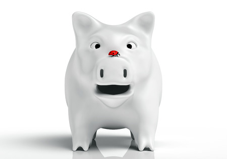 front view of a surprised white piggy bank that watches a red ladybird which stands on top of its nose, on a white background