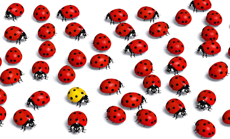unique yellow ladybug stays in the middle of a crowd of the red ones, on a white background Stock Photo