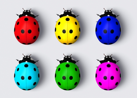 top view of six ladybugs with the back colored with different colors Stock Photo