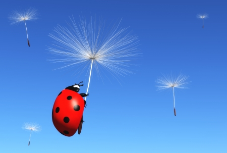 a ladybug is clinging to a floret of a dandelion which is carried by the wind along with others florets, on a blue sky background