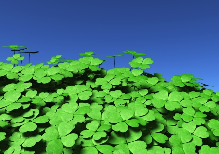 view of a group of four-leaf clovers of different height and dimensions, on a blue sky background