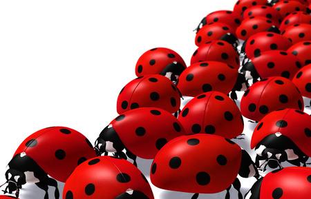 Nahaufnahme von einem Teil einer Gruppe von roten Marienkäfer auf weißem Hintergrund