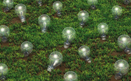 some unlit light bulbs with different size are growing as ideas on a grassy soil like plants