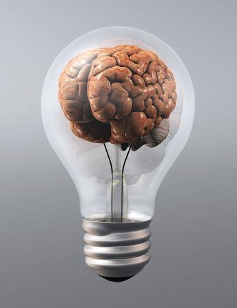 a human brain is inside a light bulb on a grey background