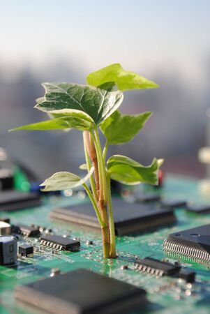 Eco-Friendly-Technologie