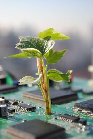Eco-Friendly-Technology photo