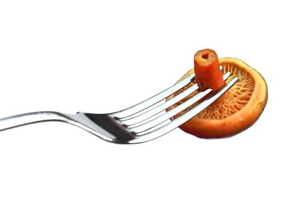 milkcap: Marinated saffron milk cap mushroom on a fork