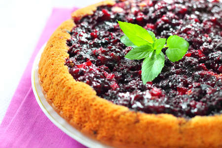Blackberry pie closeup