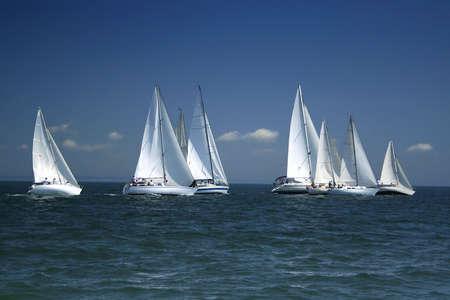 bateau de course: La grande course a commenc� ! D�but dun regatta de navigation. Les yachts de navigation concurrencent dans la vitesse. Banque d'images