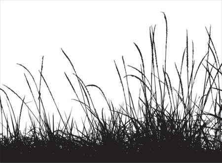 Grass vector silhouette Stock Vector - 760210