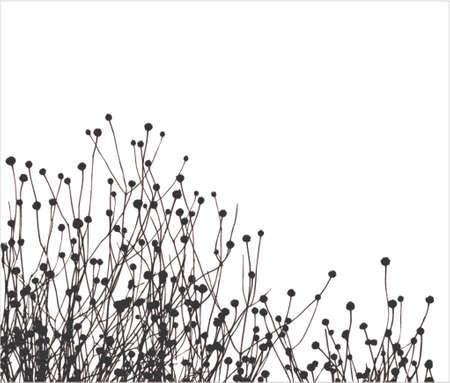 Grass vector silhouet. Is zeer realistisch!