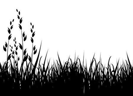 gras vector illustratie / horizontale / zwart silhouet