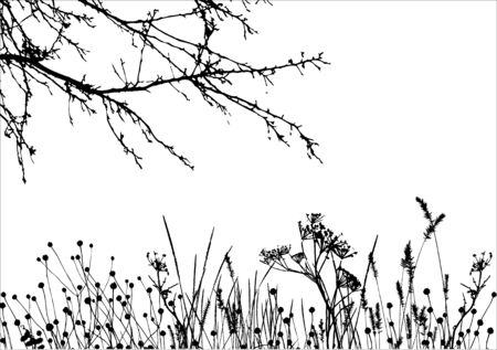 grass & tree / vector silhouette / details are separated