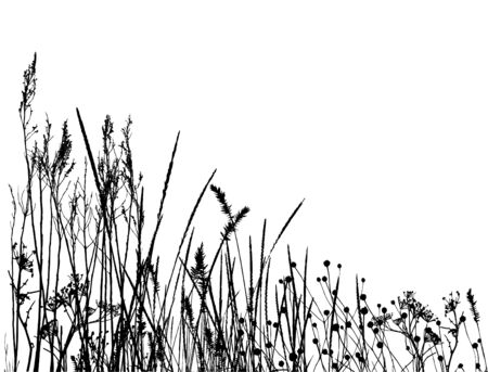 real grass  silhouette / vector /  objects are separated Vettoriali