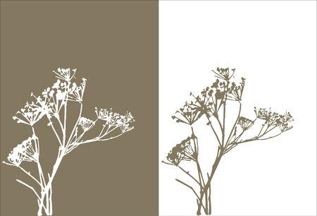 grass  silhouette / vector / nature