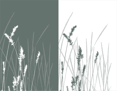 real grass  silhouette / vector /  2 colors