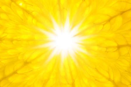 Oranje zoals Sun / Super Macro / achtergrond