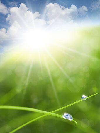 물방울에 잔디, 태양과 푸른 하늘 반사와 에코 자연 배경