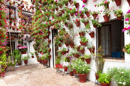 Lente Bloemen Decoratie van Old House Patio, Cordoba, Spanje, Europa Stockfoto