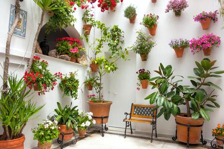 Flores De Primavera Decoración De Casa Vieja España Los Patios De